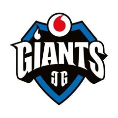 Vodafone Giants Gaming